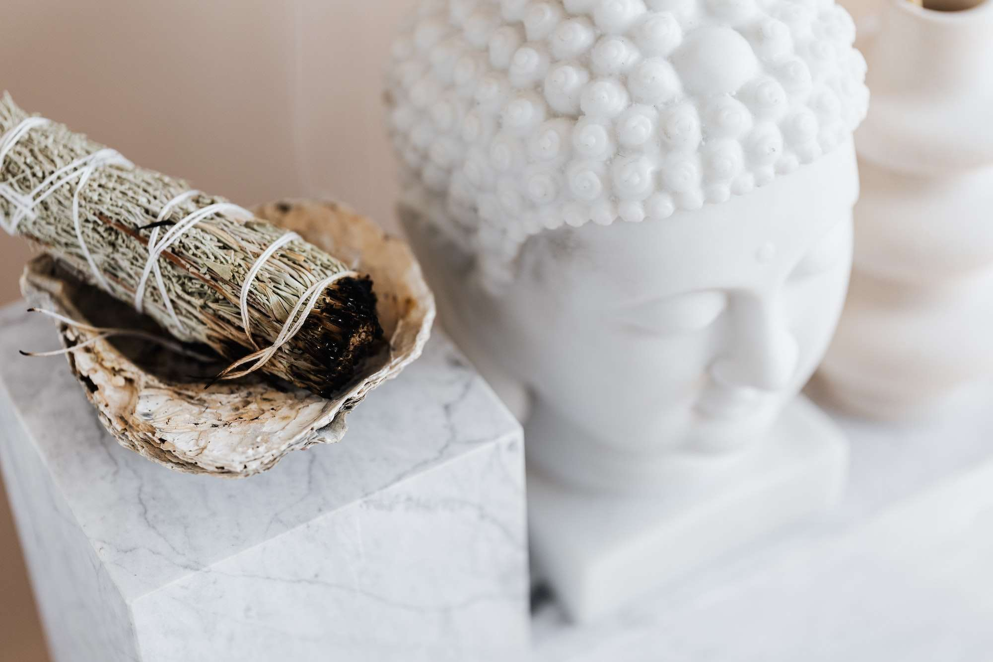 Cleanse Your Home this Spring with Sage